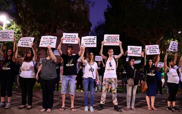 הפנה למען זכויות בעלי חיים בתל אביב, 2018 (צילום: Tomer Neuberg/Flash90)