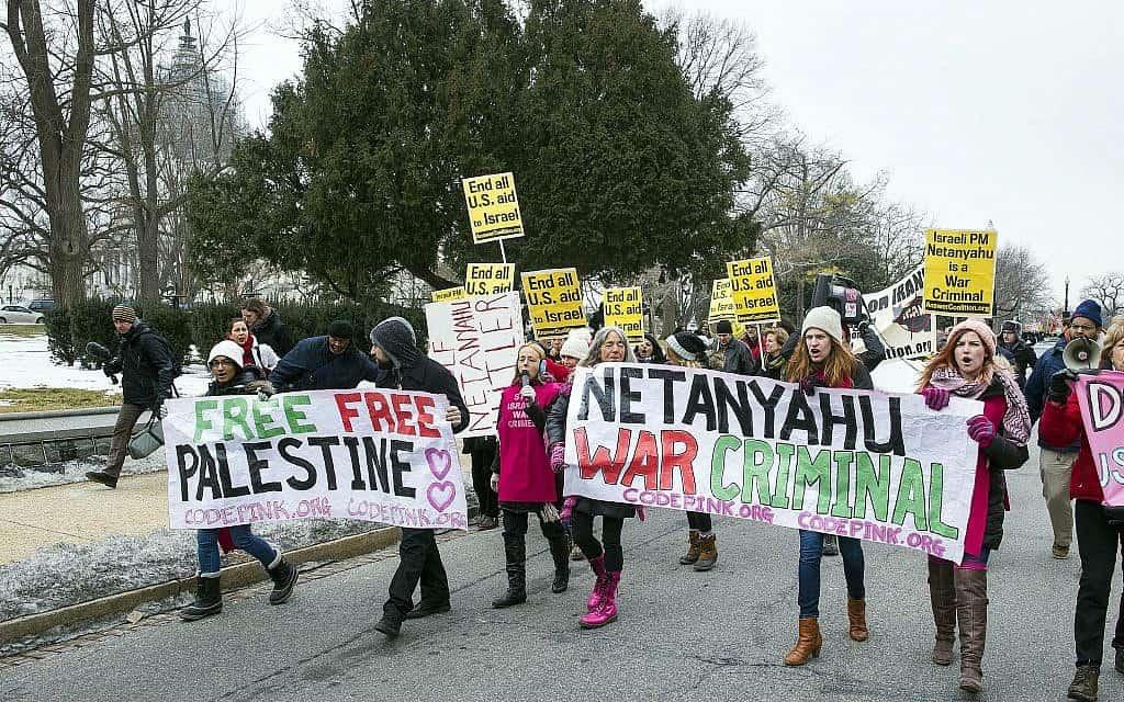 הפגנה נגד ישראל ונתניהו בוושינגטון, 2015 (צילום: AP Photo/Cliff Owen)