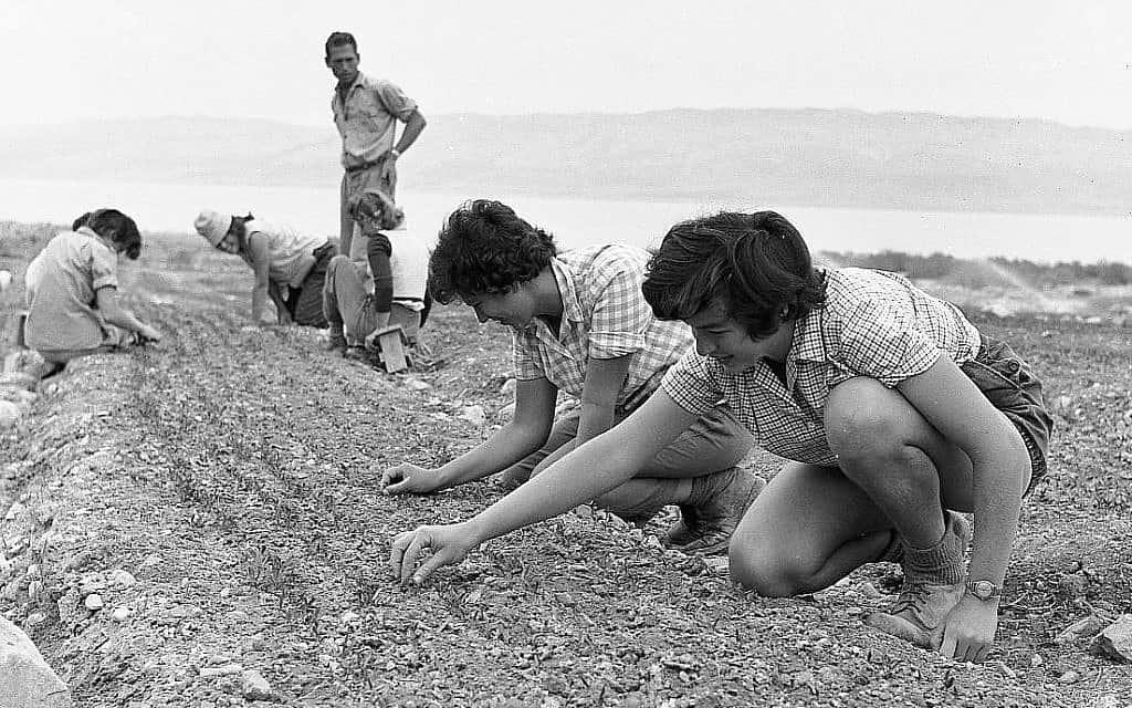 ילדים בטיול לעין גדי ומצדה, תחילת שנות ה-50 (צילום: אפרים אילני)