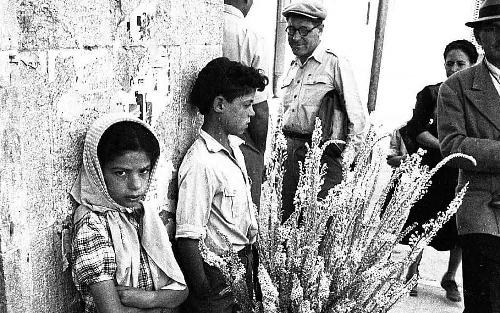 ילדים ישראלים (צילום: אפרים אילני)