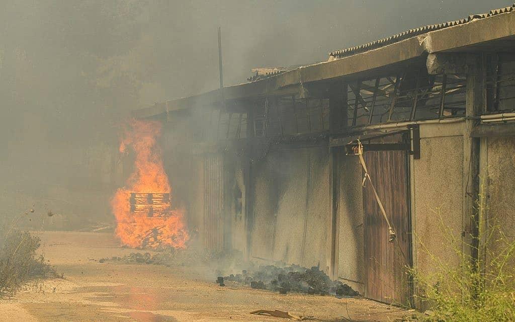 שריפה בשבי שומרון בגדה המערבית, 17 ביולי 2019 (צילום: Sraya Diamant/Flash90)
