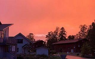 פינלנד, 2019 (צילום: קסניה סבטלובה)