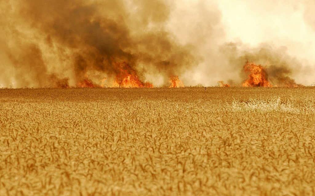 """שדה חיטה בניר עם בוער בעקבות ירי טיל של חמאס, 2007 (צילום: אבי אוחיון לע""""מ)"""