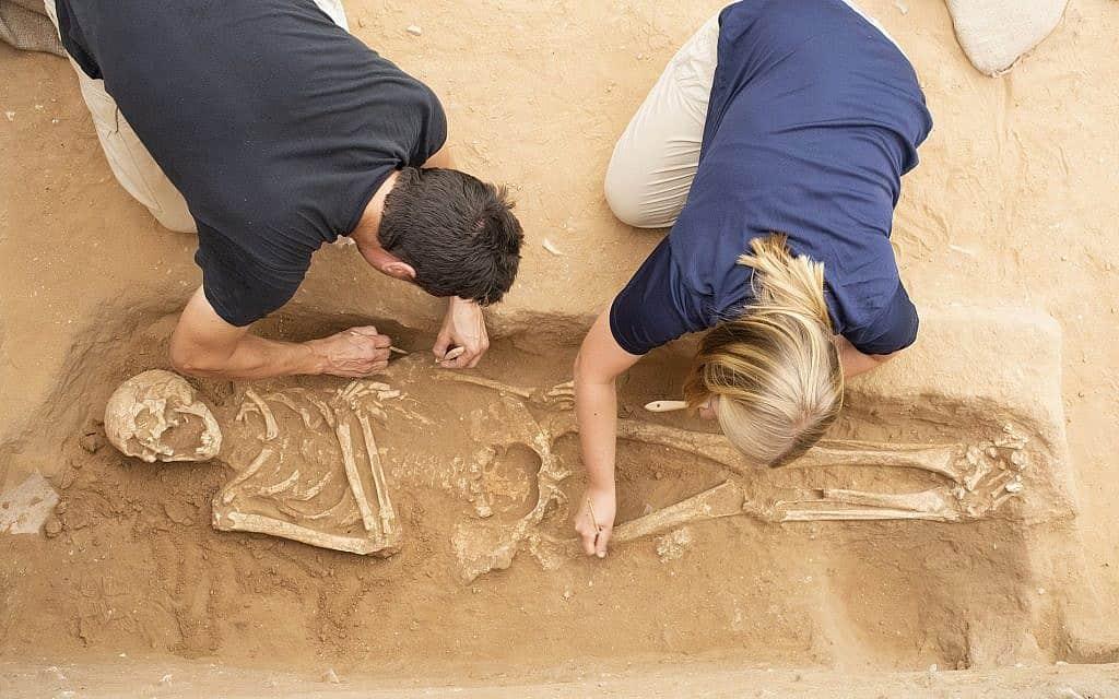 חפירות בבית הקברות הפלישתי באשקלון (צילום: צילום: מליסה איה/באדיבות משלחת לאון לוי לאשקלון)