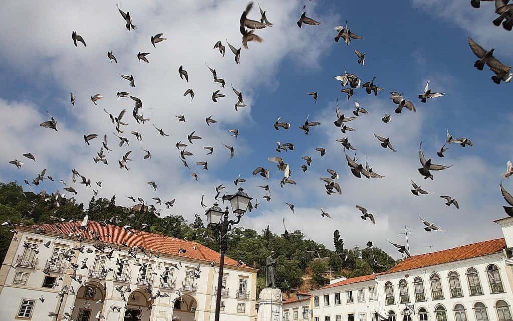 פורטוגל (צילום: Isaac Harari /Flash90)