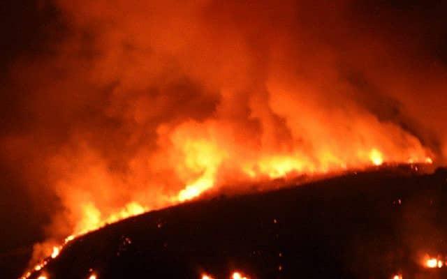 השריפה בסוסיתא, ב-17 באוגוסט 2019 (צילום: רשות הטבע והגנים)