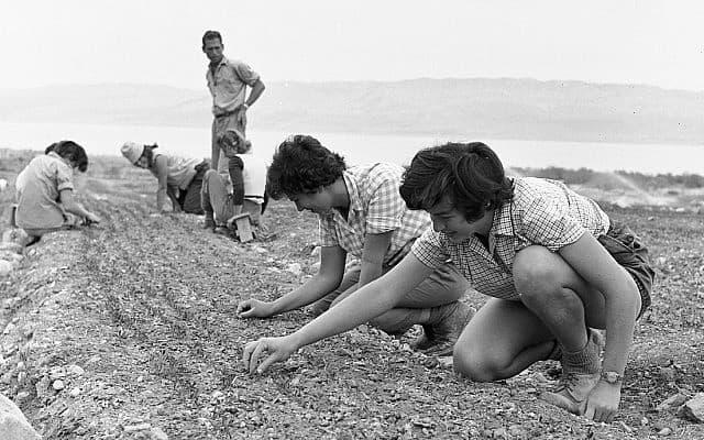 נערים בטיול לעין גדי ולמצדה, בתחילת שנות ה-50 (צילום: אפרים אילני)