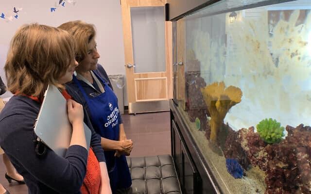 סופיה (16) מתבוננת עם מתנדבת באקווריום שבחנות בעלי החיים במרכז (צילום: ג'וזפין דולסטן)