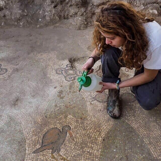 חשיפתה של רצפת הפסיפס במתחם הכנסייה מהתקופה הביזנטית ברמת בית שמש, 2017 (צילום: אסף פרץ, רשות העתיקות)