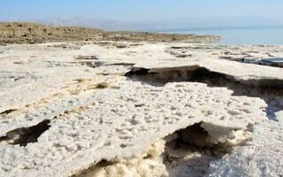 קו החוף הנסוג של ים המלח, שמפלס המים שלו יורד ביותר ממטר לשנה, מותיר מאחוריו שכבה דקה של קרום מלח