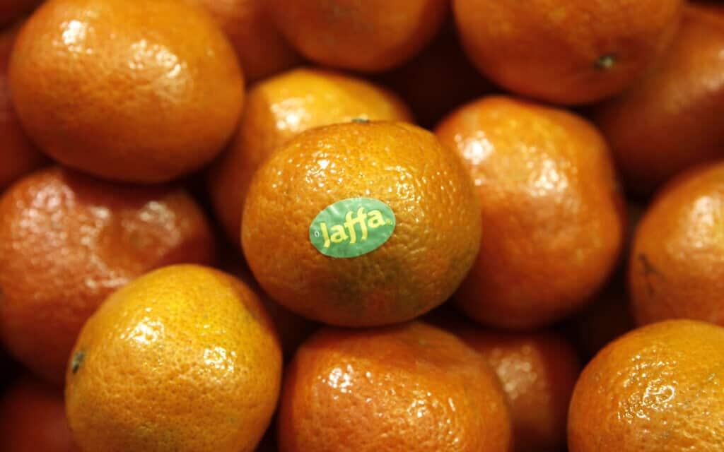 פירות הדר ביצוא ישראלי (צילום: אורי לנץ/פלאש90)
