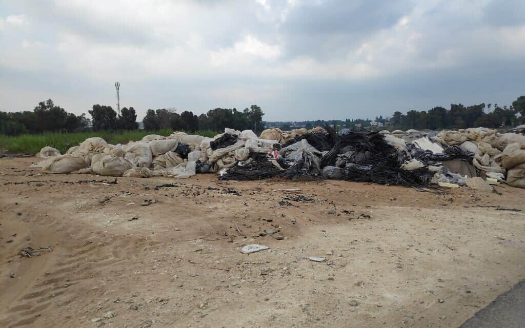 פסולת חקלאית באיזור השרון
