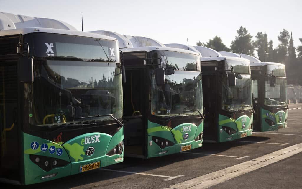 תחבורה ציבורית (צילום: Hadas Parush/Flash90)