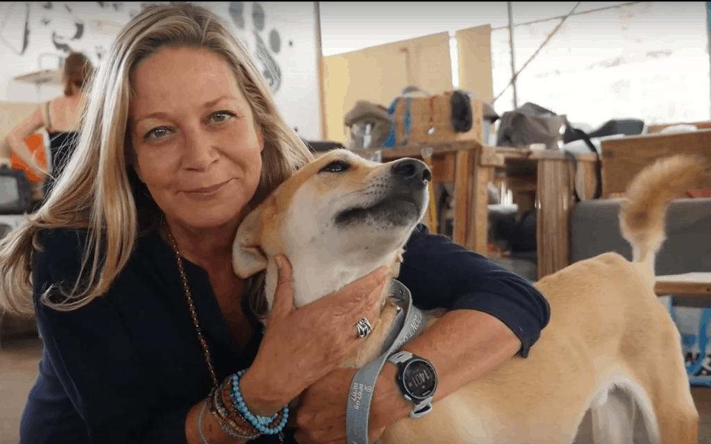 ח״כ מיקי חיימוביץ', במקלט לכלבים (צילום: צילום מסך יוטיוב)