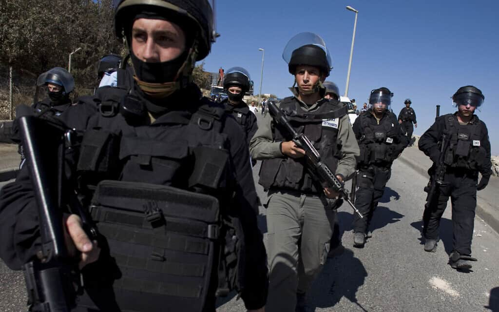 כוחות משטרה בעיסאוויה, נובמבר 2010 (צילום: AP Photo/Bernat Armangue)