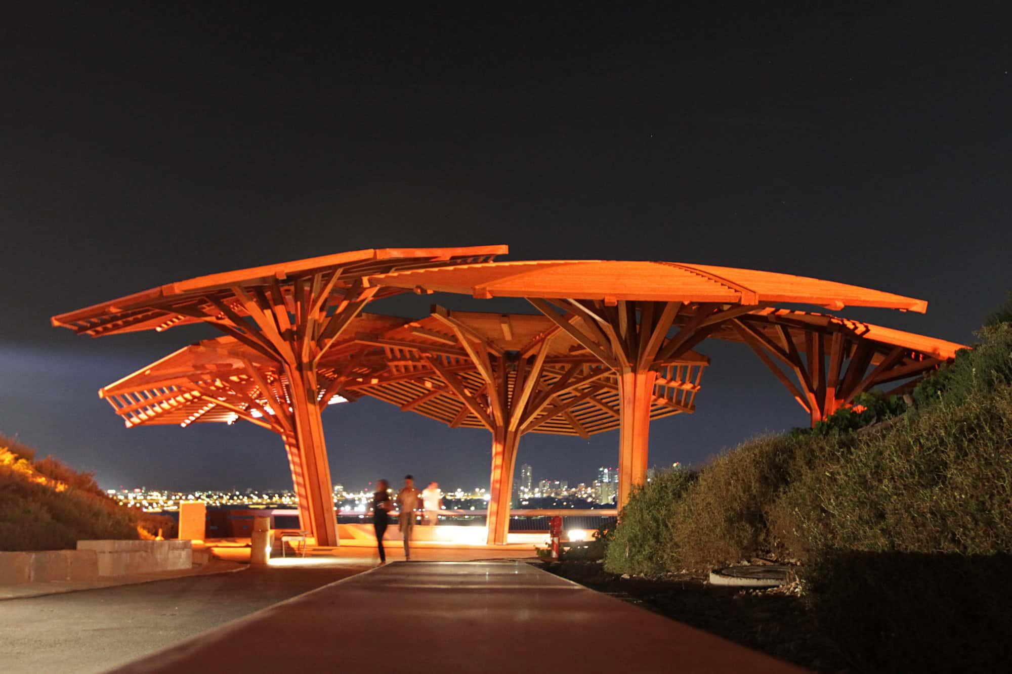 פארק אריאל שרון (צילום: דרור גרטי/פלאש90)