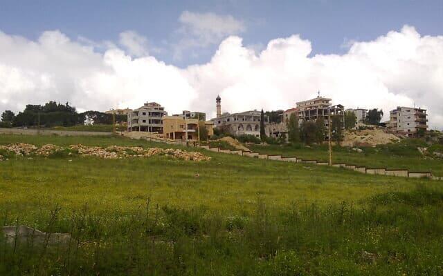 העיר אל-נבטיה בדרום לבנון (צילום: CC BY 3.0 ansam61/WikiMedia)