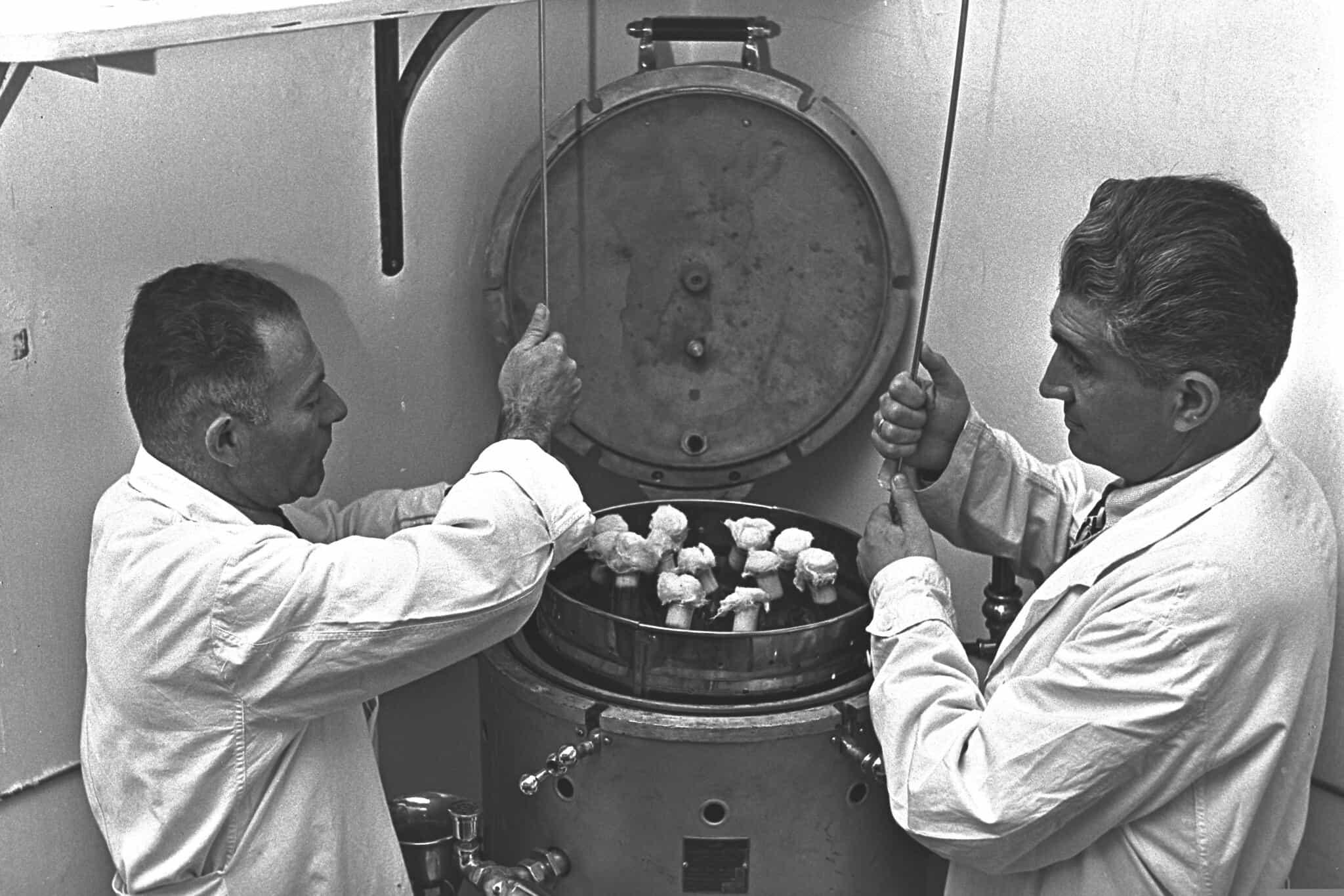 """מדענים ישראלים מטפלים בדגימות נגועות בשחפת, במסגרת המאבק במחלה (צילום: לע""""מ)"""