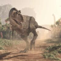 דינוזאור. אילוסטרציה (צילום: Orla/iStock)