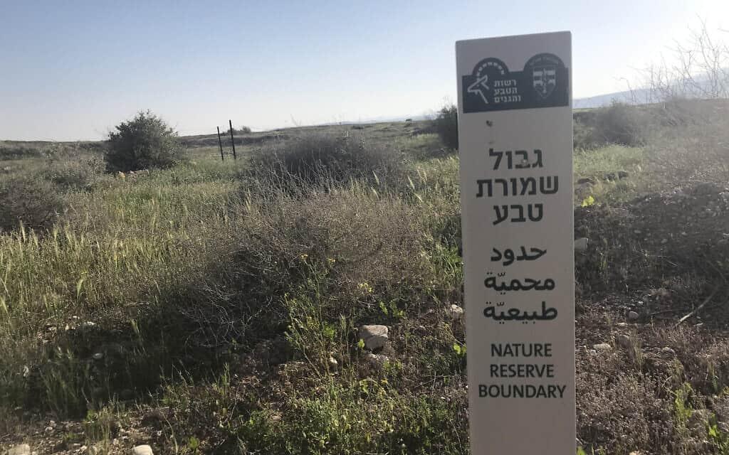 שמורת טבע בשטחים (צילום: אמיר בן-דוד)