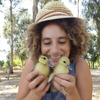 מלאני לידמן הלכה לקנות תרנגולות וחזרה הביתה עם צ'יז וקווקרס, אחרי ביקור בשוק הציפורים בכפר קאסם, 20 באוגוסט 2016