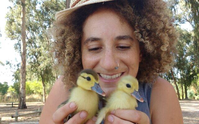 הלכתי לקנות תרנגולות וחזרתי הביתה עם צ'יז וקווקרס, אחרי ביקור בשוק הציפורים בכפר קאסם, 20 באוגוסט 2016 (צילום: באדיבות מלאני לידמן)
