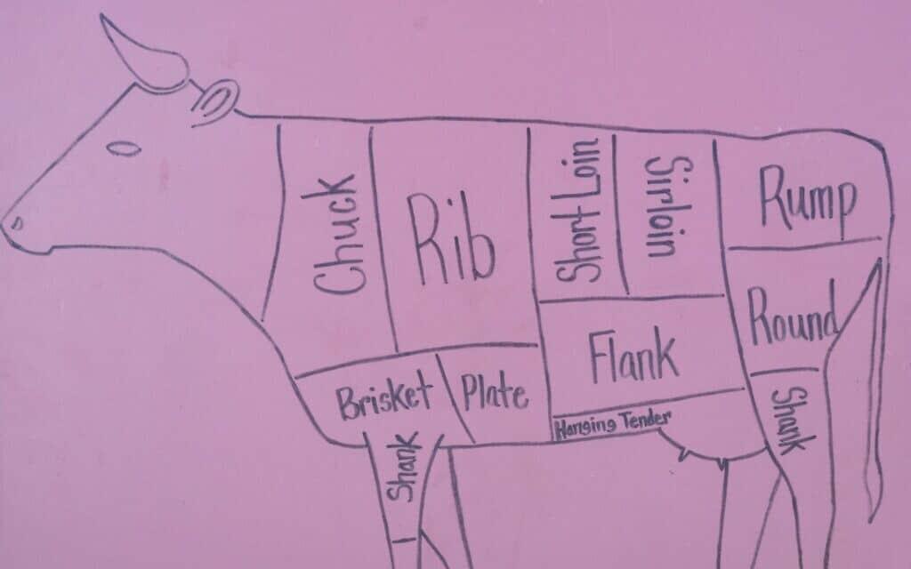 איור של פרה מחולקת לנתחים (צילום: David Tran-iStock)
