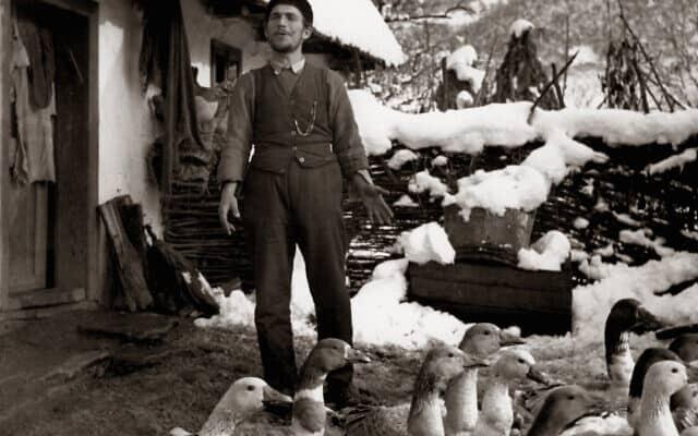 מגדלי אווזים יהודים בסביבות נאג'יסומבט (טרנבה, סלובקיה) ב-1938 (צילום: רומן וישניאק/באדיבות CEU Press)