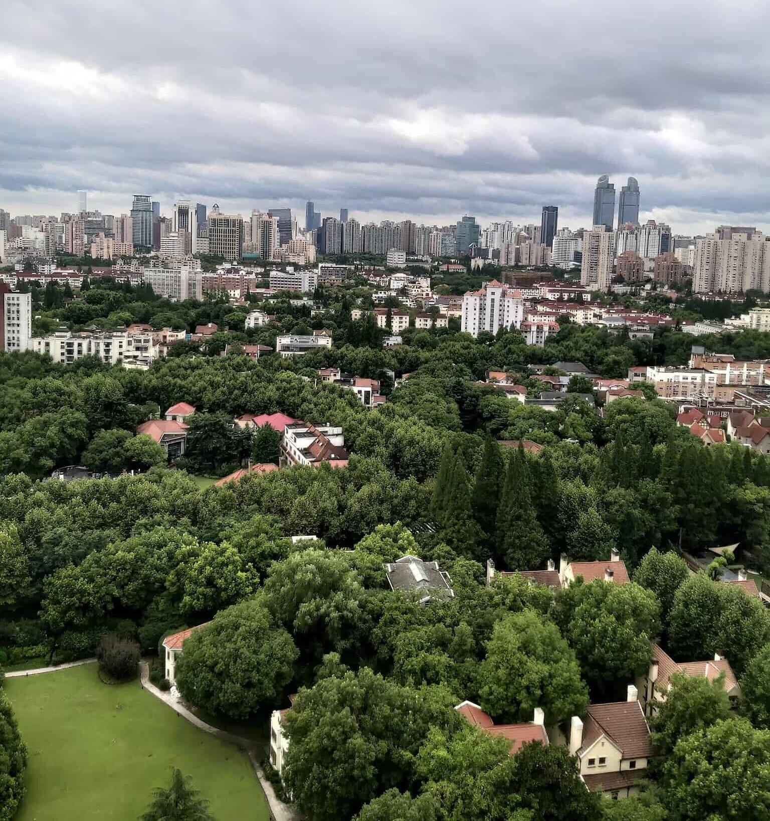 מבט על שנגחאי (צילום: יפעת פרופר)