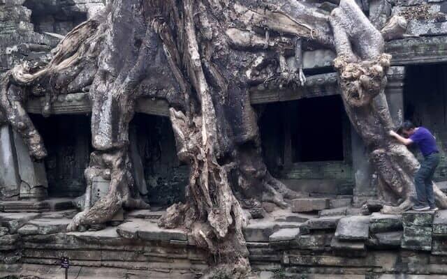 שרידי מקדש באנגקור-ואט (צילום: יפעת פרופר)