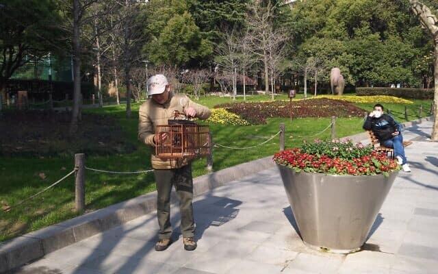 """""""איש הציפורים"""" בשולי הפארק הסגור בשנגחאי (צילום: יפעת פרופר)"""