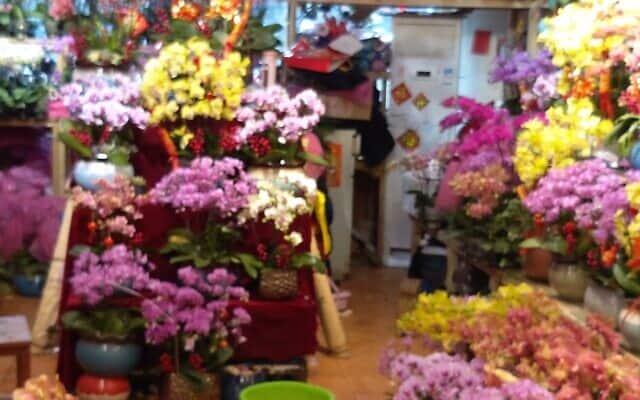 חנויות פרחים נשארו פתוחות בסגר (צילום: יפעת פרופר)