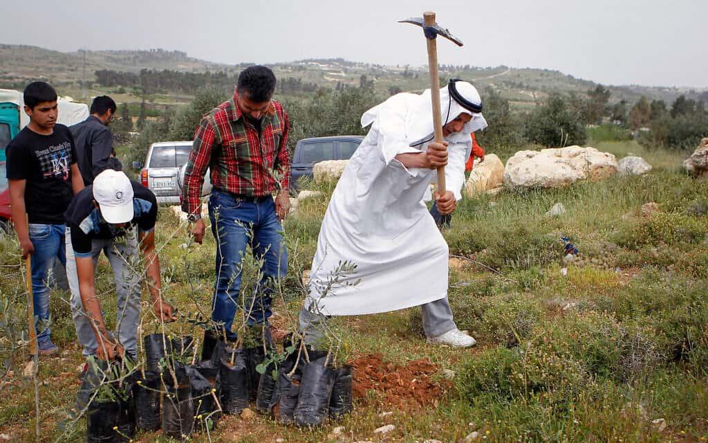 אילוסטרציה: נציגי הרשות הפלסטינית, יחד עם פעילי שלום מישראל ומהעולם, נוטעים עצים ליד מתחם בית אל-ברכה במחאה על גזילת האדמות בידי מתנחלים ישראלים, 9 באפריל 2016 (צילום: Wisam Hashlamoun/Flash90)