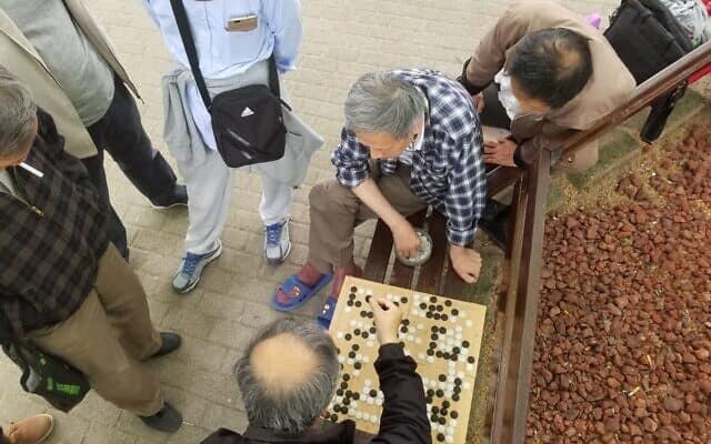 פארק בשנגחאי. משחק חשיבה סיני ״גו״ (צילום: יפעת פרופר)