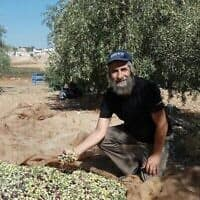 תמונת הווטסאפ של דוד קישיק כהן במטע הזיתים שלו