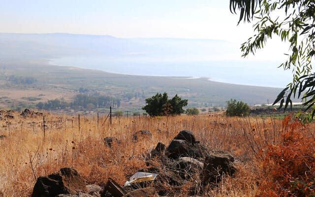 תל מוטילה (צילום: שמואל בר-עם)