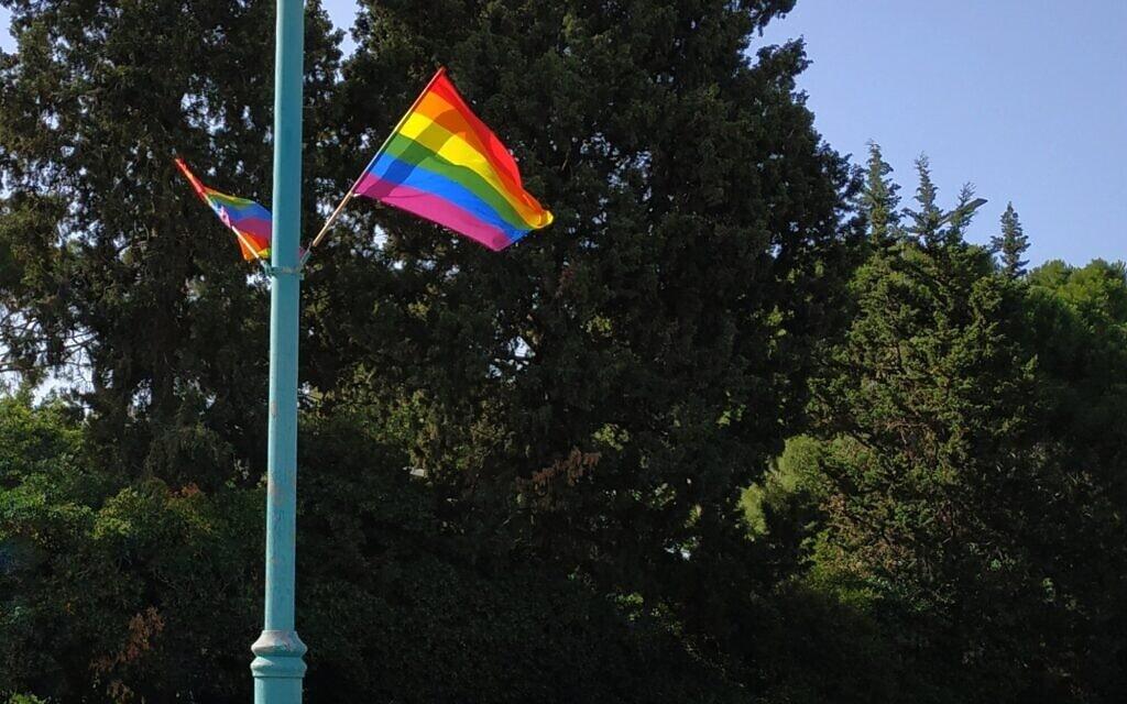 דגל הגאווה (צילום: ארז ברזוליק)