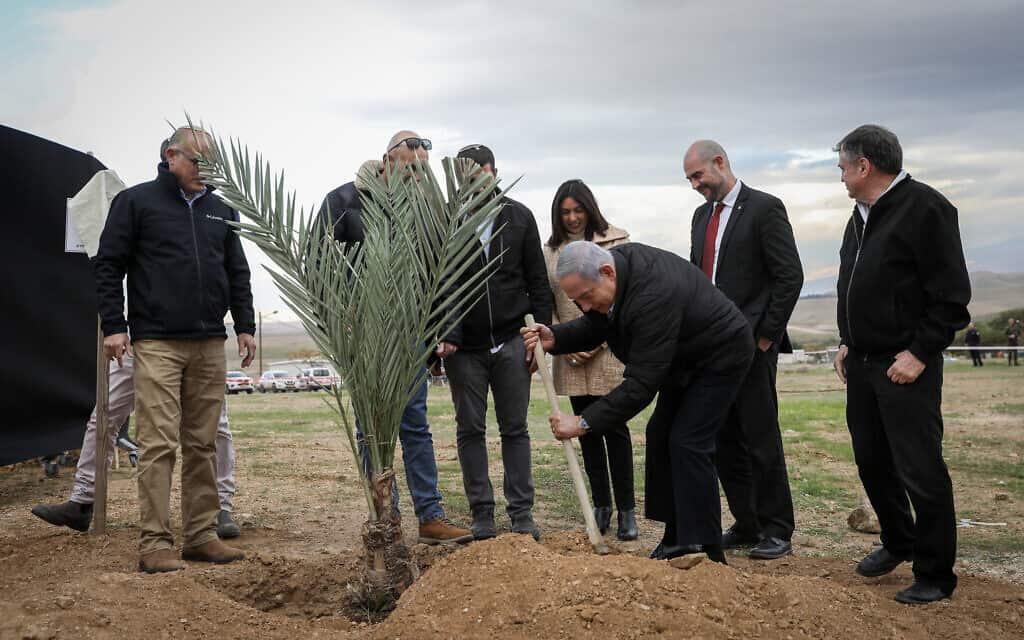 ראש הממשלה נתניהו נוטע עץ בהתנחלות מבואות יריחו, פברואר 2020 (צילום: פלאש 90)