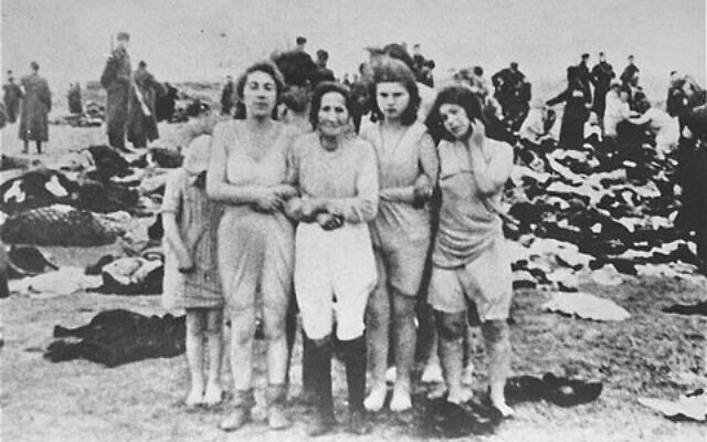 הטבח בחולות שקדה בלטביה, שבו נורו 2,700 יהודים בשלושה ימים בדצמבר 1941 (צילום: רשות הציבור)