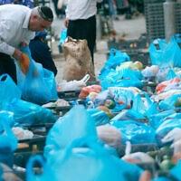שקיות ניילון בסופרמרקט. אילוסטרציה (למצולמים אין קשר לנאמר בכתבה) (צילום: אוליבייה פיטוסי/פלאש90)