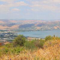 הנוף ברמת הגולן (צילום: שמואל בר-עם)