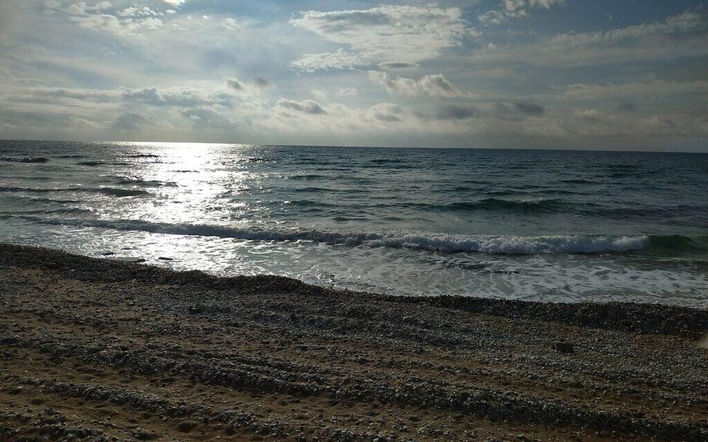 חוף הכרמל, חיפה (צילום: ארז ברזוליק)