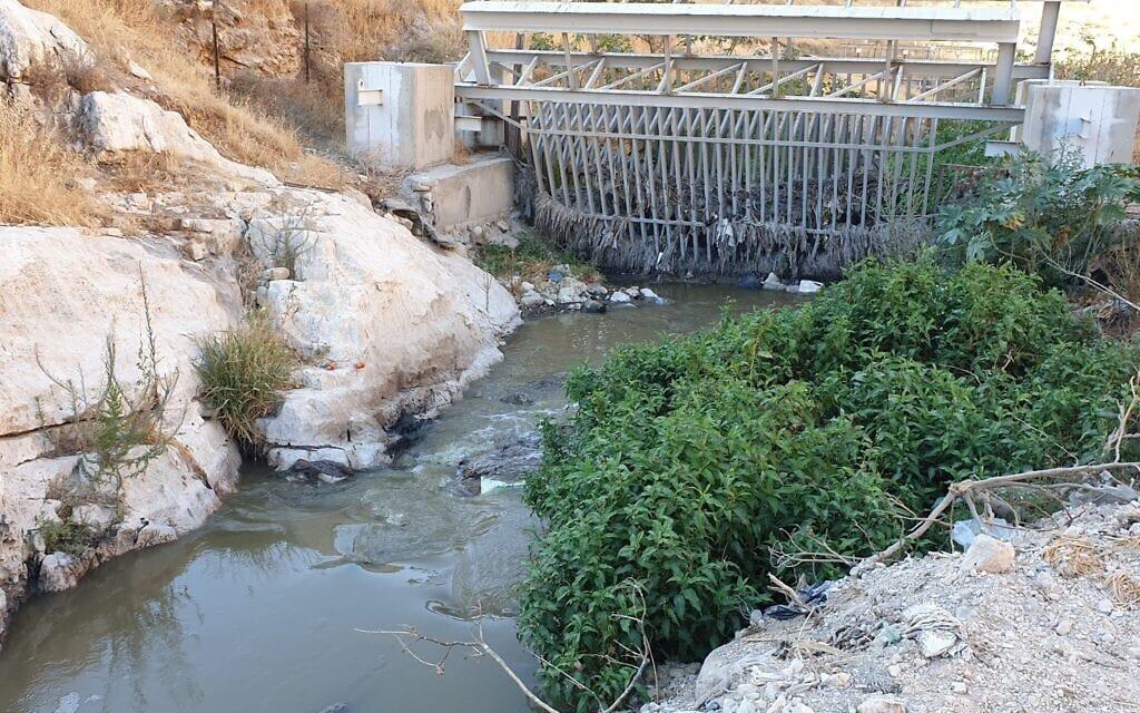 זיהום בנחל קדרון וסביבתו, אוגוסט 2020 (צילום: אביב לביא)
