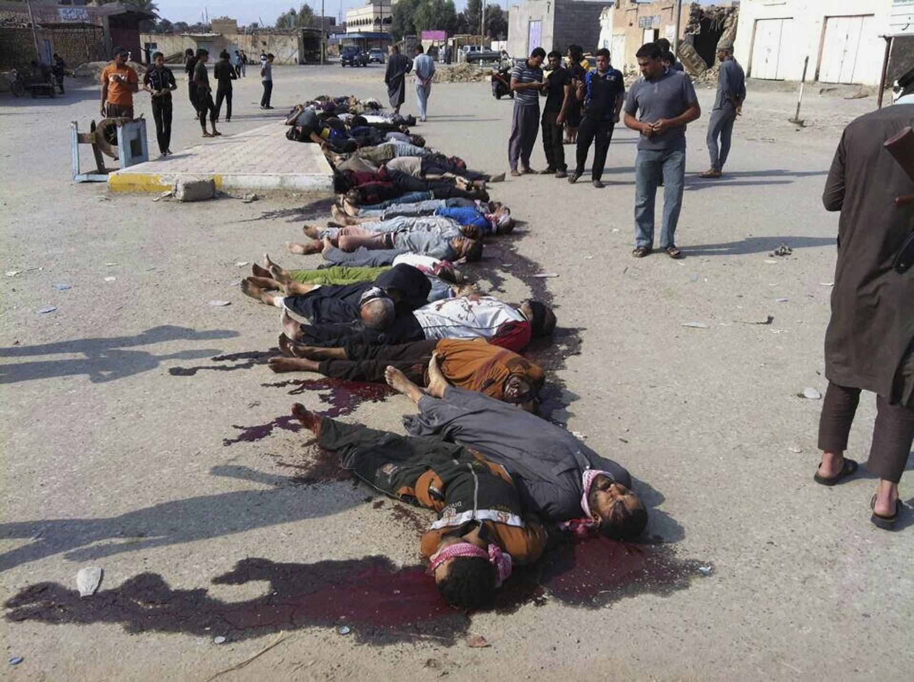 גופות של לוחמים סונים בעיראק שהוצאו להורג על ידי דאע&quote;ש, ב-29 באוקטובר 2014 (צילום: AP Photo)