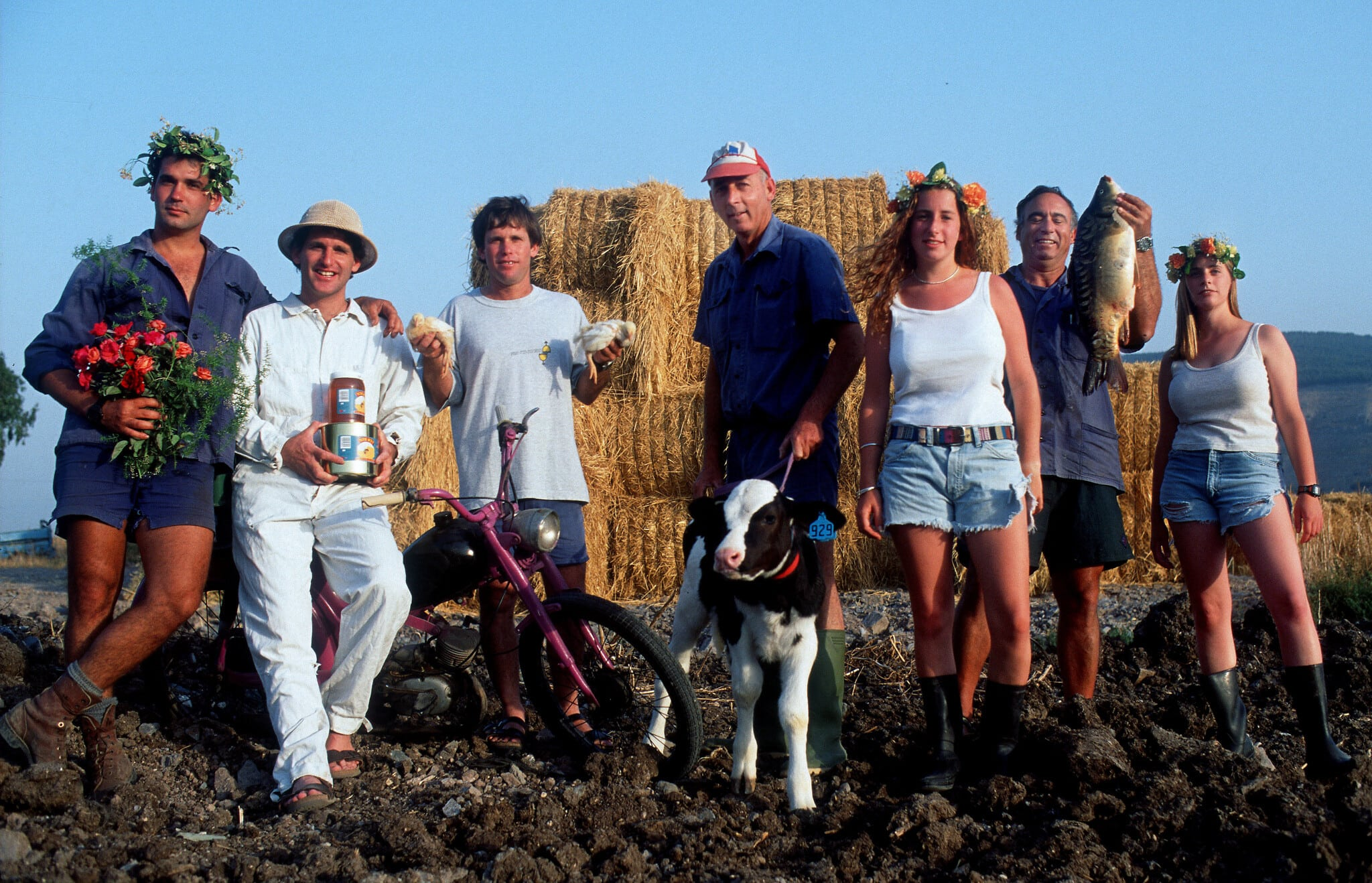 חגיגת שבועות בקיבוץ עין חרוד הסמוך לנחל, 2012 (צילום: Moshe Shai/FLASH90)