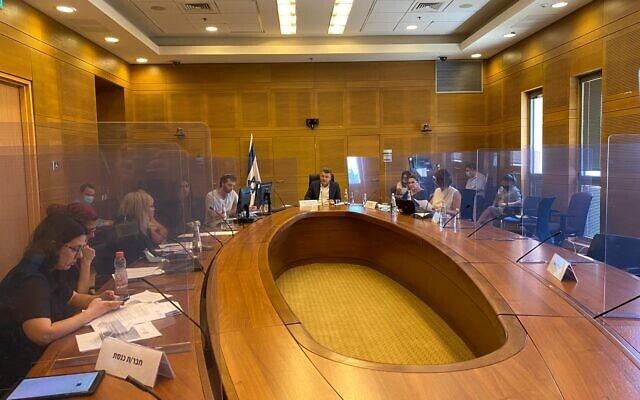 הדיון על נוער במצוקה בוועדה לזכויות הילד (צילום: דוברות הכנסת)