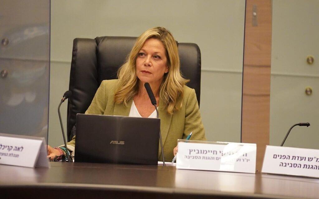 """ח""""כ מיקי חיימוביץ', יו""""ר ועדת הפנים והסביבה, בדיון בוועדה (צילום: יונתן סמייה, דוברות הכנסת)"""