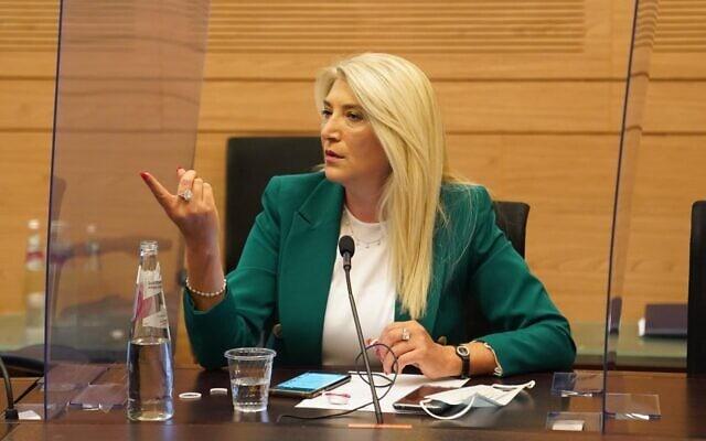 אוסנת מארק בוועדת החוקה, 24 בספטמבר 2020 (צילום: דוברות הכנסת)
