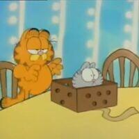 """החתול גארפילד בסרטון """"אבו דאבי דו"""", צילום מסך"""