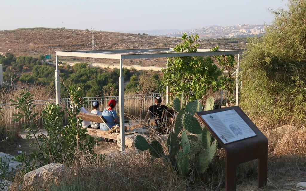 תצפית ליד מקווה, בגן הארכיאולוגי גבעת התיתורה (צילום: שמואל בר-עם)